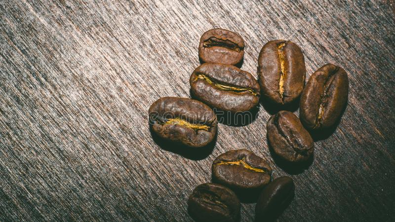 Brown coffee beans in the morning royalty free stock images