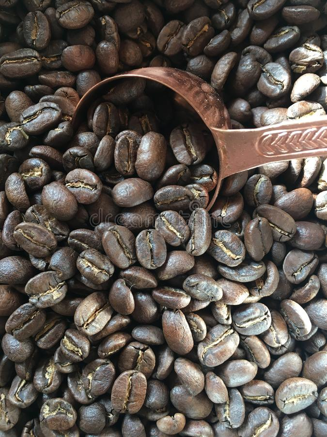 Brown coffee beans in a sack with a wooden spoon. With the best quality and resolution royalty free stock photo