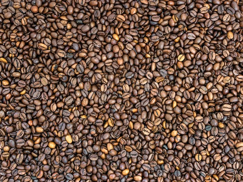 Brown coffee beans texture. Mix of dark and medium roasted coffee grains. Can be used as food and drink background stock image
