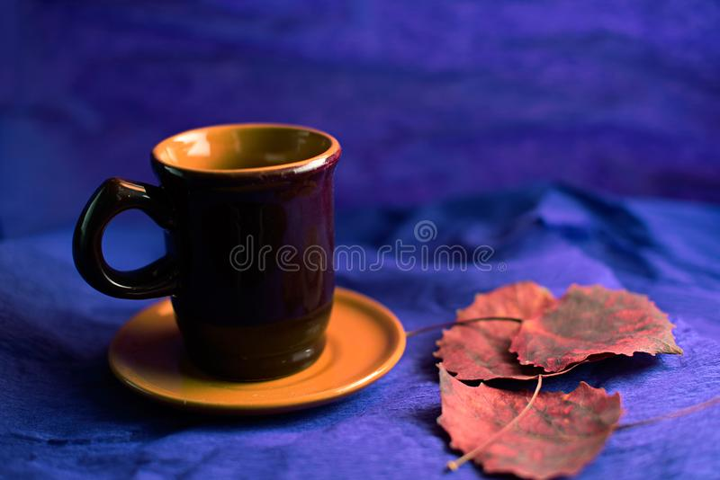Brown coffee cup and dry aspen leaves stock image