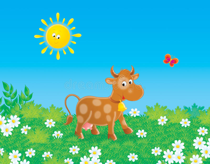 Download Brown cow stock illustration. Illustration of pasture - 15074215
