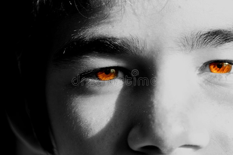 Brown Crystal Clear Eyes royalty free stock photo