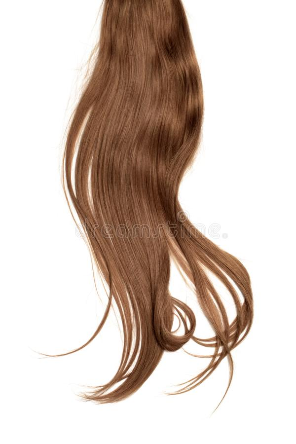 Brown dark hair isolated on white background. Long disheveled ponytail. Natural healthy hair isolated on white background. Detailed clipart for your collages and stock photography