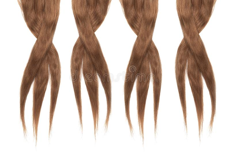 Brown Dark hair isolated on white background. Long disheveled ponytail. Natural healthy hair isolated on white background. Detailed clipart for your collages and stock image