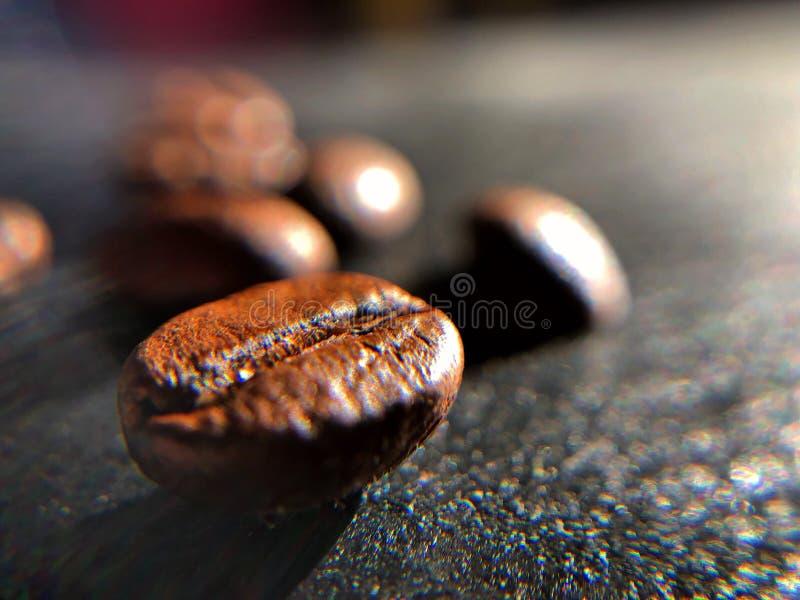 Coffee beans on the sun macro stock photos