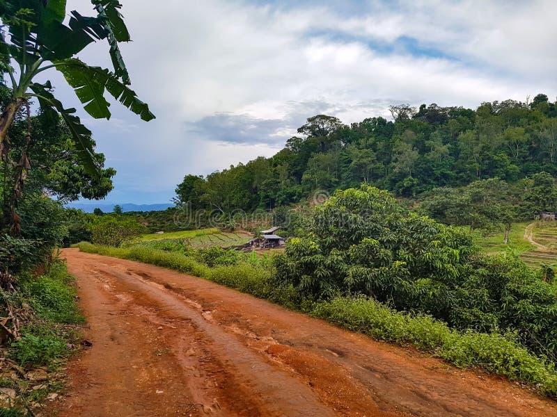 Brown dirt road street hill dwon mountain bike farm field north chiang mai outside nature forest village doi Thailand. Peak doi Asia royalty free stock photography