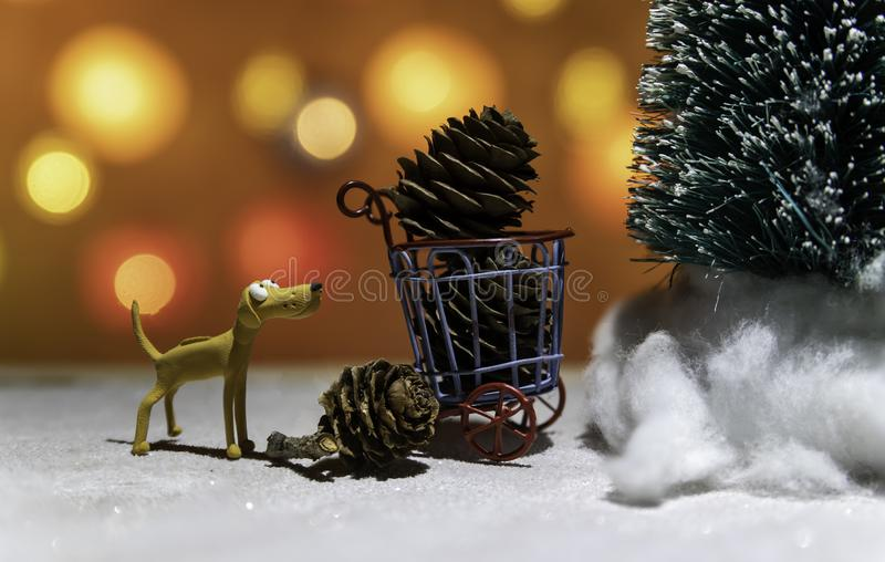 Brown dog watching Christmas tree and pine cone in basket from Christmas light background. In Thailand stock photography