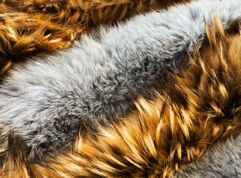 Brown e la pelliccia dai capelli lunghi animale grigia strutturano il fondo immagini stock libere da diritti