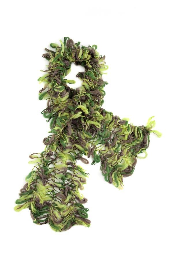 Brown e lenço verde de angorá imagem de stock royalty free