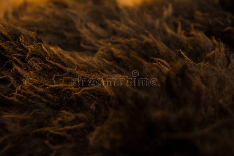 Brown e macro alaranjado da textura da pele foto de stock royalty free