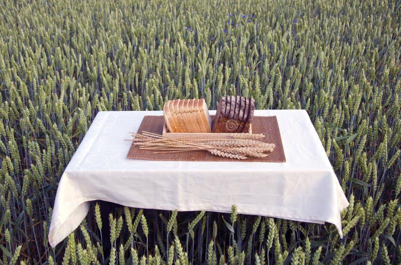 Brown e pão branco na tabela no campo de trigo do verão fotografia de stock