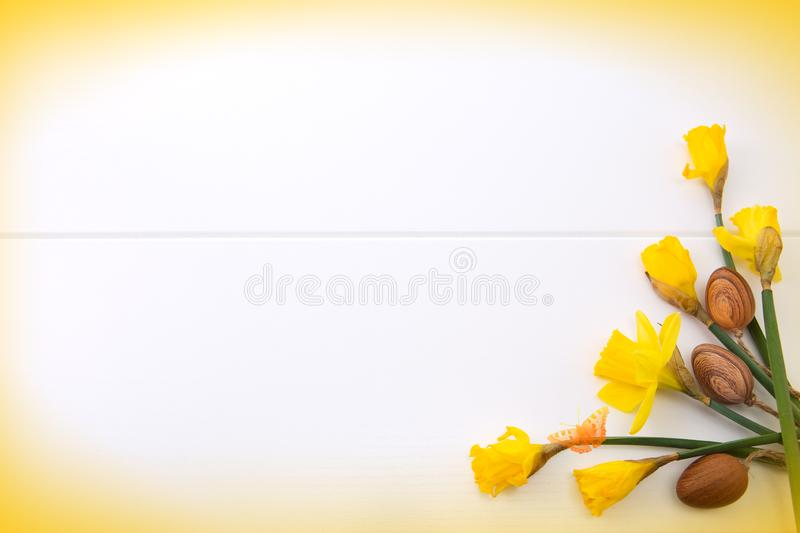 Brown easter eggs and yellow daffodils. Easter background. royalty free stock photography
