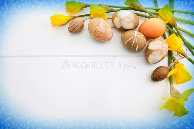 Brown easter eggs and yellow daffodils. Easter background. royalty free stock photos