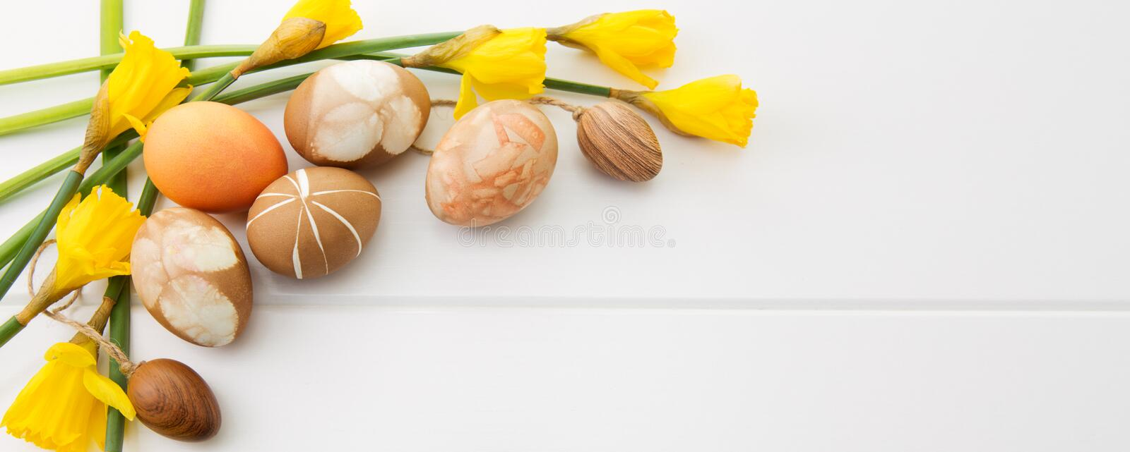 Brown easter eggs and yellow daffodils. stock photography