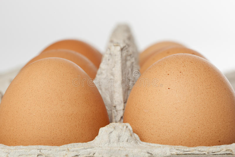 Download A Brown Egg Stock Images - Image: 19862274