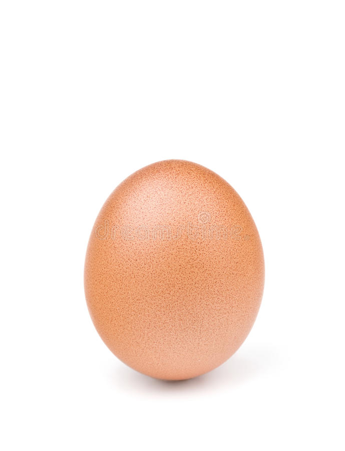 Brown egg isolated on white. Brown egg isolated on the white background royalty free stock photos