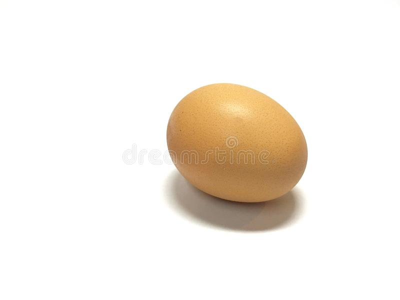 Brown egg. On the isolated white background stock images
