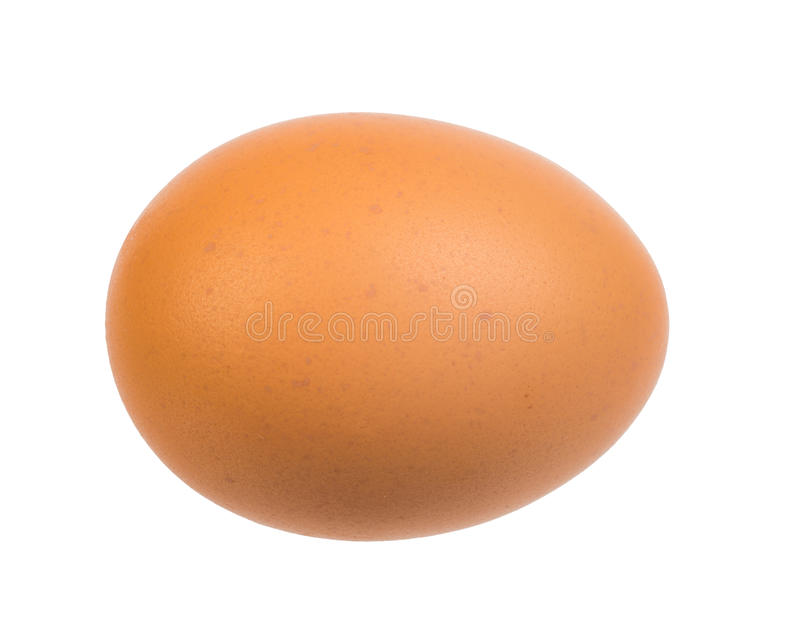 Brown egg on white. Picture of brown egg on isolated white background stock photo
