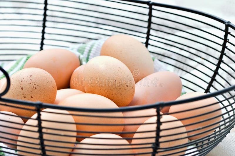 Brown Eggs. Freshly gathered farm raised brown eggs in a wire basket royalty free stock image