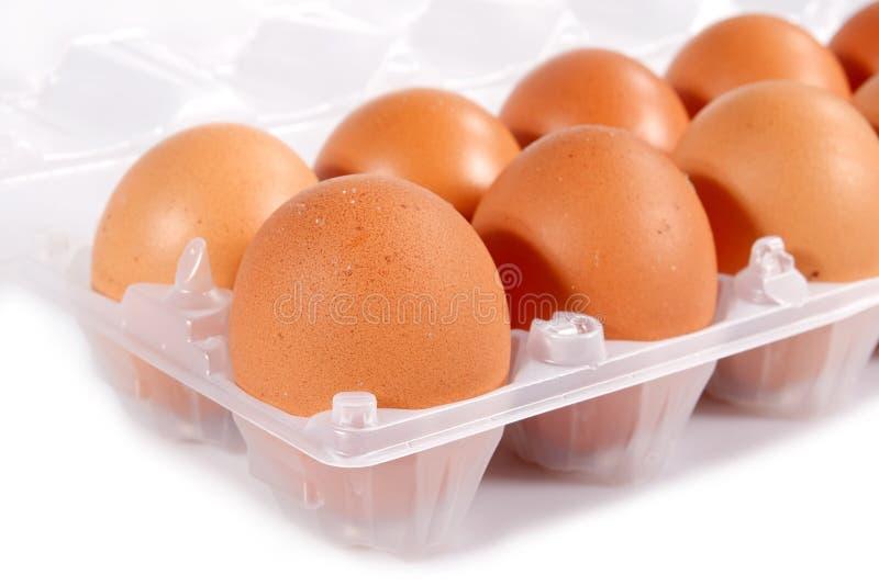 Download Brown eggs stock image. Image of ingredient, natural - 24060861