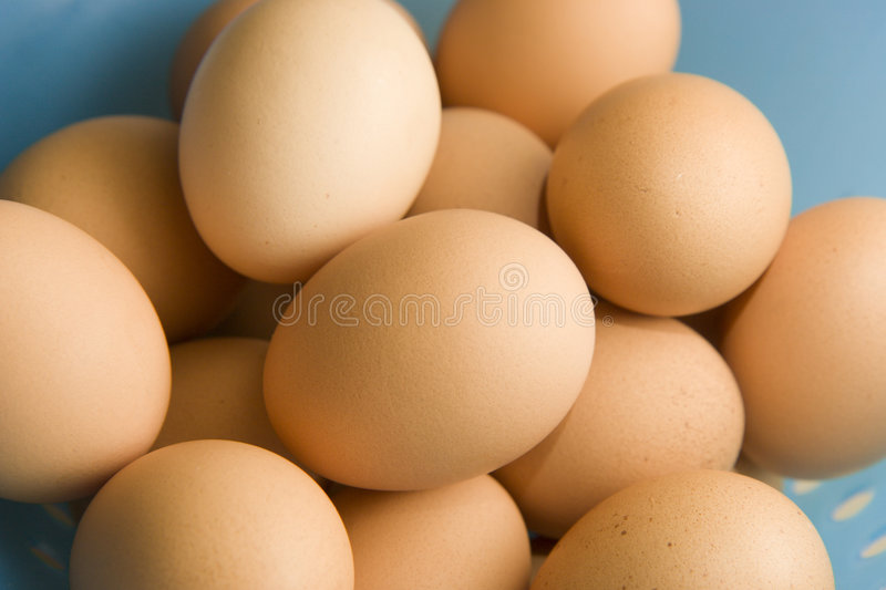 Download Brown eggs stock photo. Image of healthy, farm, ovoid - 6039842