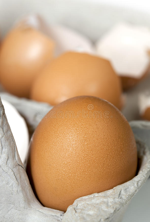 Download Brown Eggs in Carton stock photo. Image of brown, foreground - 11883662