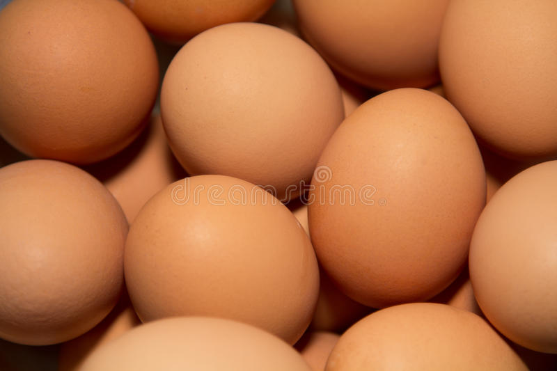 Brown Eggs royalty free stock photos