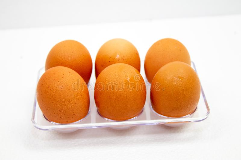 brown Eggs have water droplets in plastic box on white background stock images