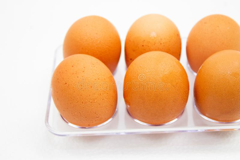 Brown Eggs have water droplets in plastic box on white background. Natural, nature, eat, material, animal, chicken, uncooked, macro, shell, oval, farm royalty free stock photos