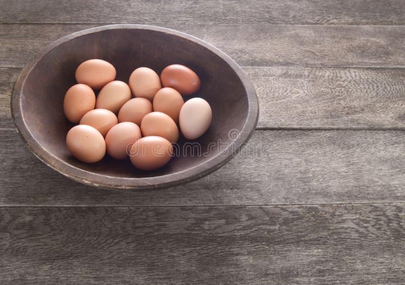 Brown-Eier stockfotografie