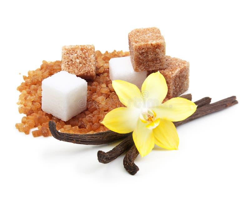 Brown et cubes blancs en sucre de canne image libre de droits