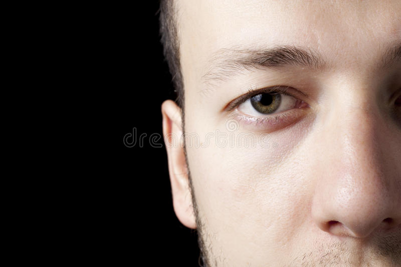 Download Brown Eye stock image. Image of unkempt, serious, detail - 14012813