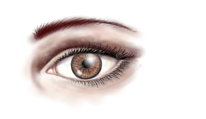 Brown eye stock illustration