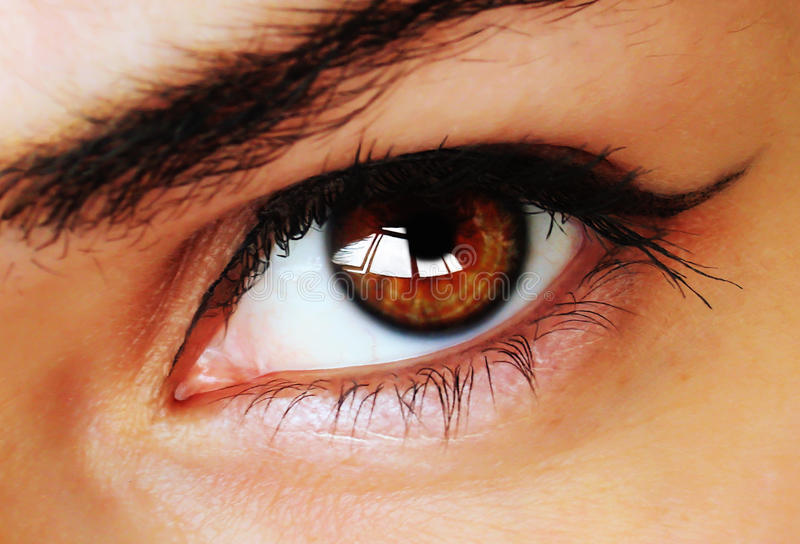 Brown eye with makeup. Hypnotic beautiful brown eye with makeup close up royalty free stock photography
