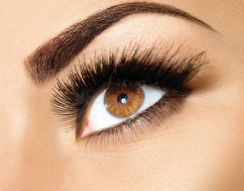 Brown eye makeup closeup stock photo