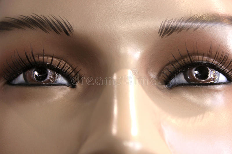 Brown Eyed O Olhar Imagem de Stock Royalty Free