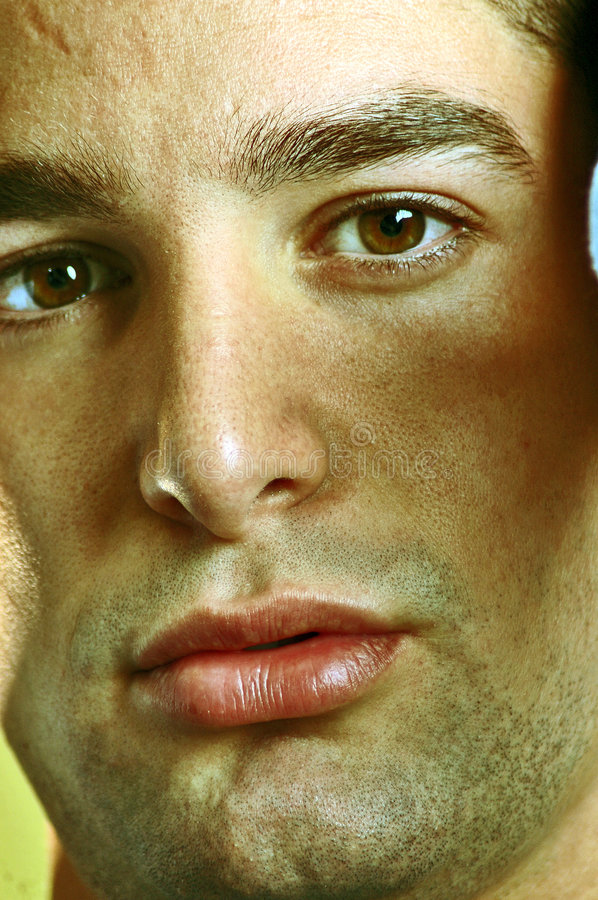 Download Brown eyes stock photo. Image of nose, brows, cheeks, close - 402758
