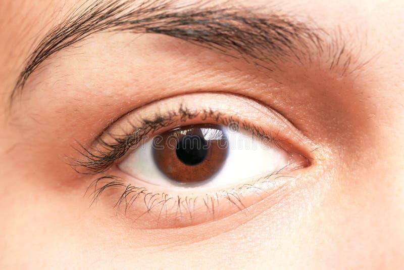 Brown eyes girl stock photography