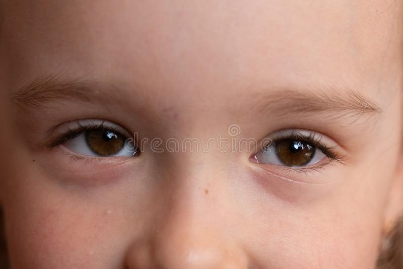 Brown eyes of a little girl close-up. children`s portrait stock images