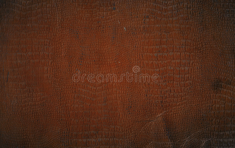 Brown Faux Crocodile Leather royalty free stock photos