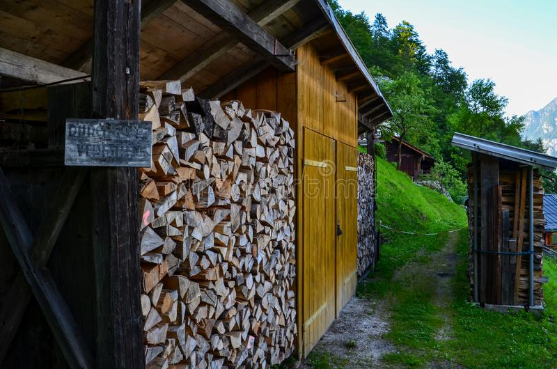 Brown Firewood royalty free stock photography