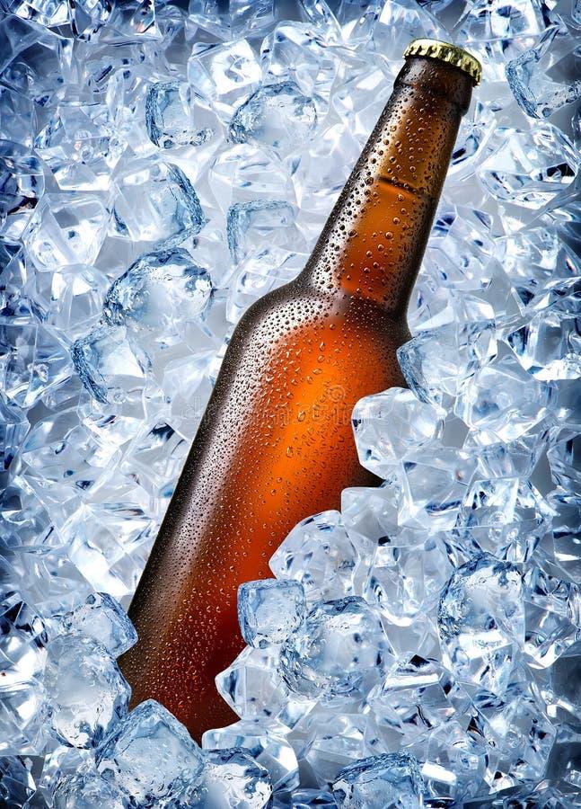 Brown-Flasche im Eis lizenzfreie stockbilder