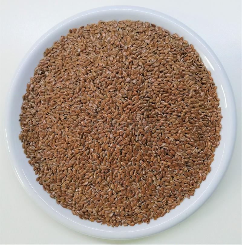 Brown flaxseed - radiole obraz royalty free
