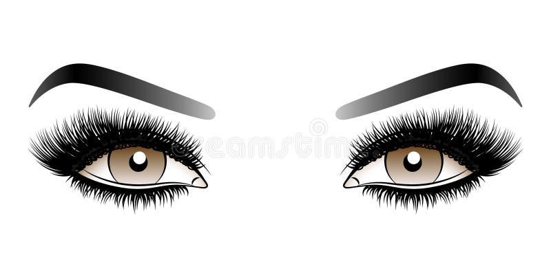 Brown-Frauenaugen mit langen falschen Peitschen mit Augenbrauen lizenzfreie stockfotografie
