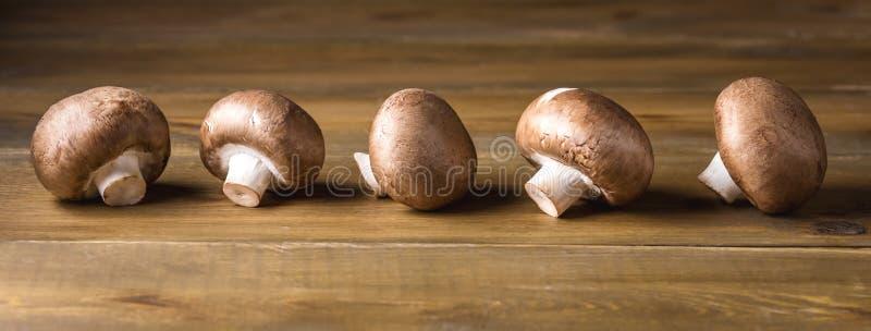 Brown fresco e bello si espande rapidamente lungamente fondo di legno del fungo prataiolo immagini stock libere da diritti
