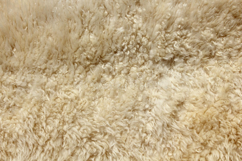 Download Brown fur background stock photo. Image of long, made - 20964208