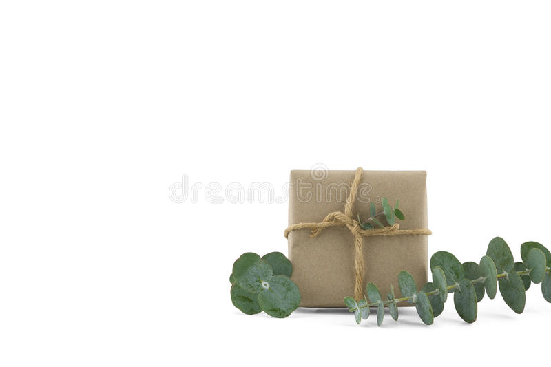 Brown gift box decorated with baby eucalyptus leaves royalty free stock image
