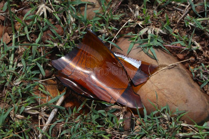 A brown glass bottle of beer broken on the ground. stock image