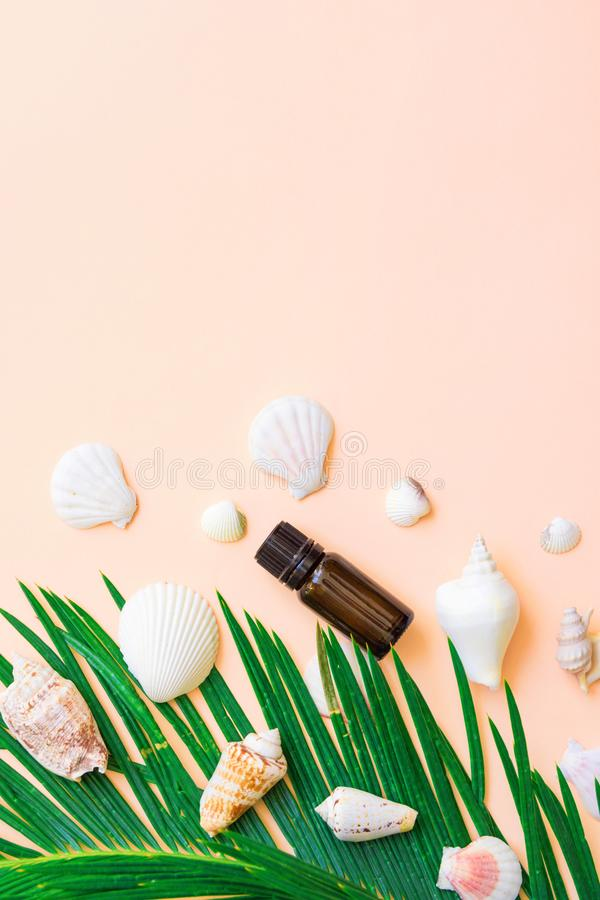 Brown glass bottle with essential oil green palm leaf white sea shells on light pastel pink background. Wellness spa body face. Care aromatherapy organic royalty free stock photo
