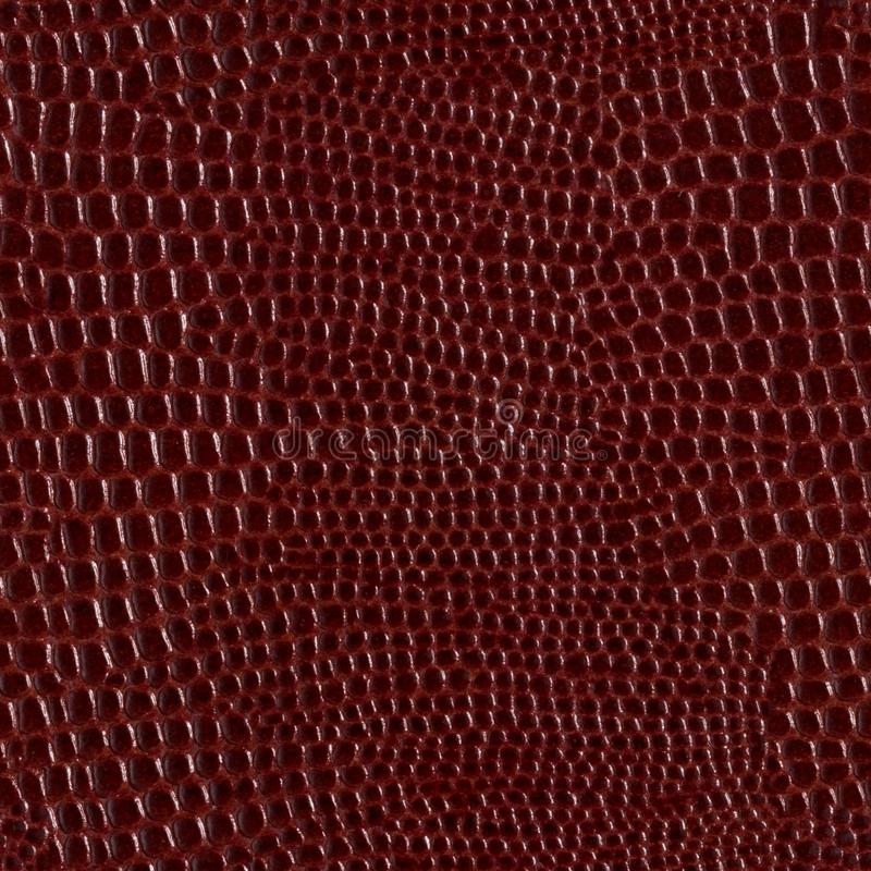 Brown glossy natural leather background. Seamless square texture, tile ready. High resolution photo royalty free stock photos